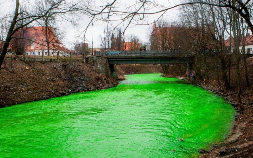 В День Св. Патрика воды Вильняле позеленели