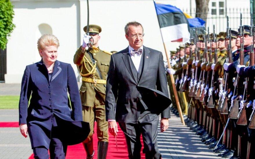Президент Эстонии о проекте ВАЭС: ждем предложения