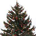 Kalėdų eglutė Marijampolėje