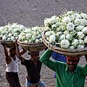 Bangladeše darbuotojai neša pintines ropių