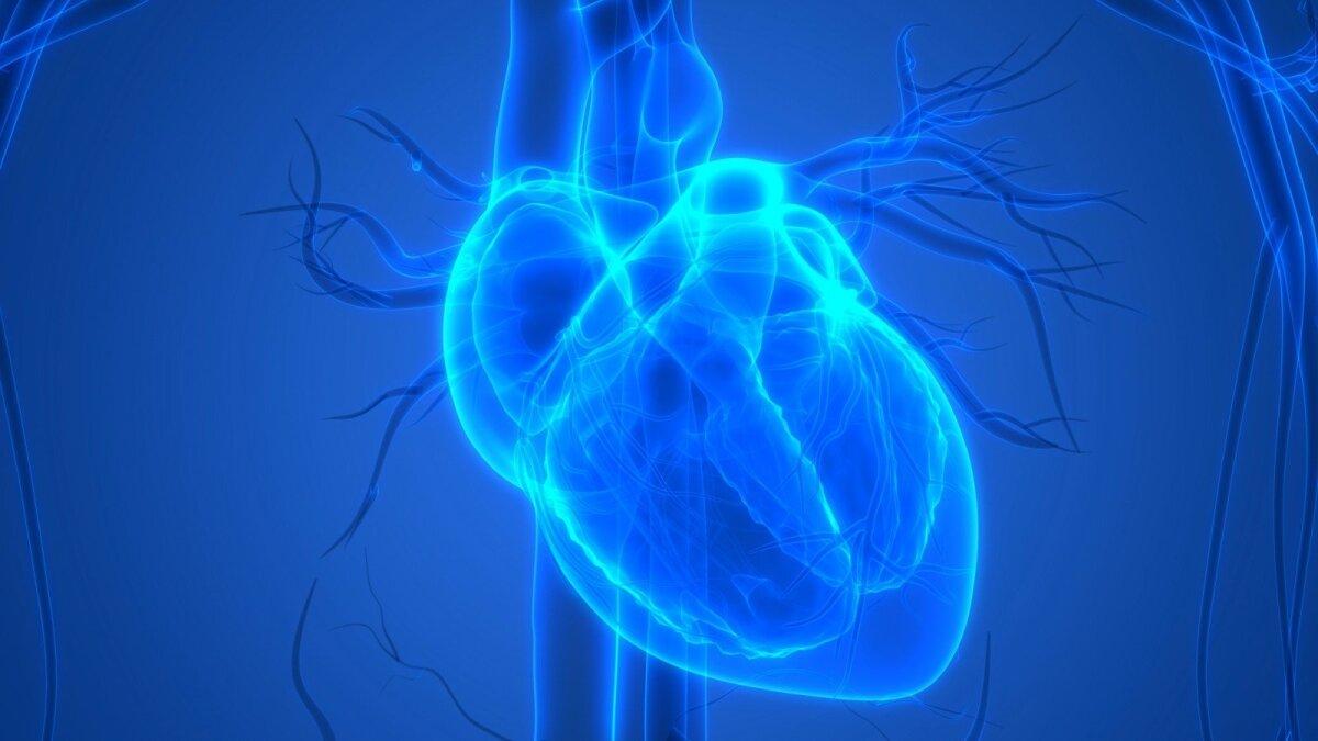 širdies sveikatos kontroliniai sąrašai vyrai