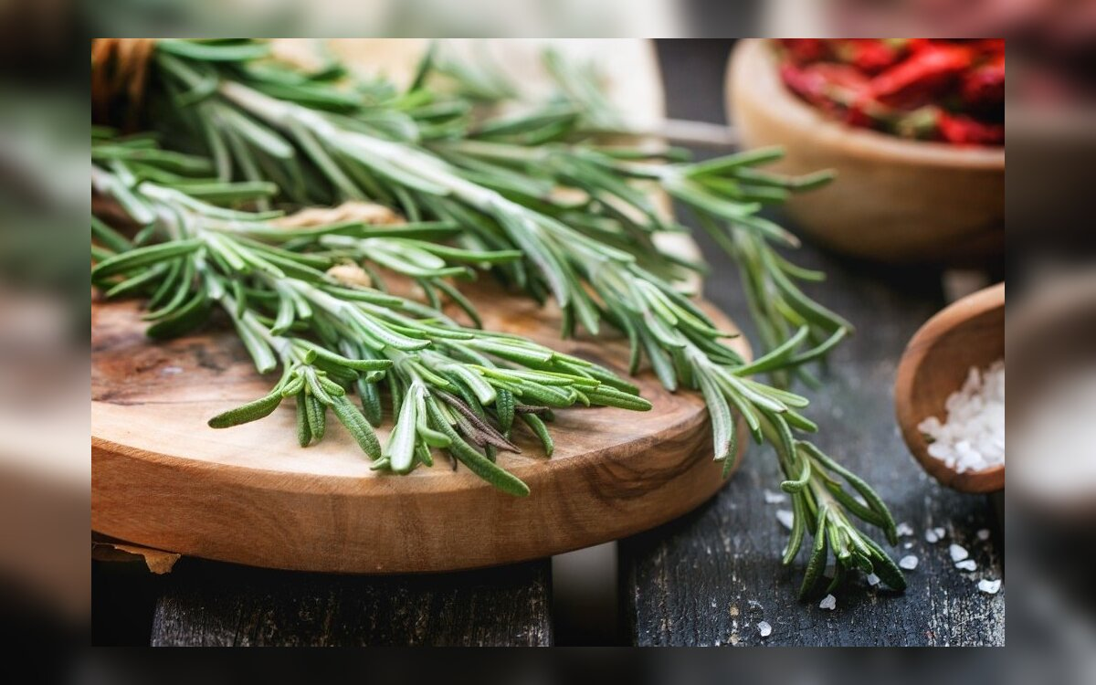 Rozmarinas – ne tik sveikatai, bet ir grožiui: 17 savybių ir 8 kaukių receptai