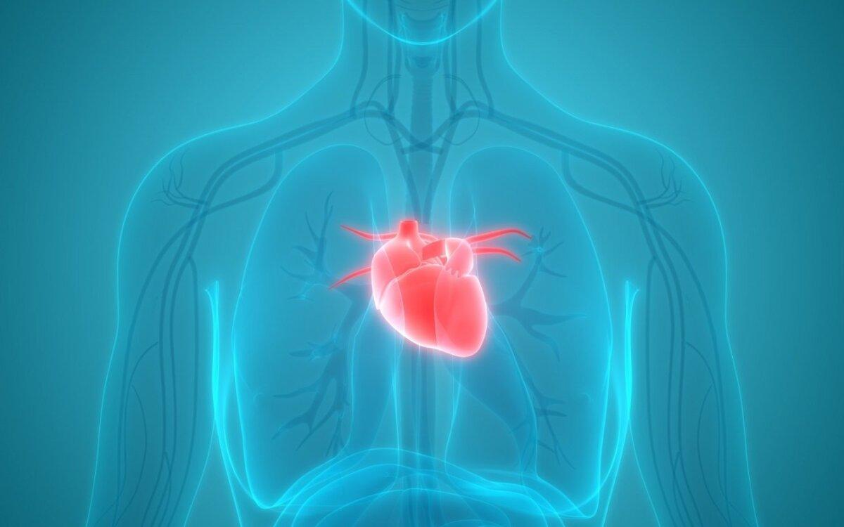 širdis murma su hipertenzija