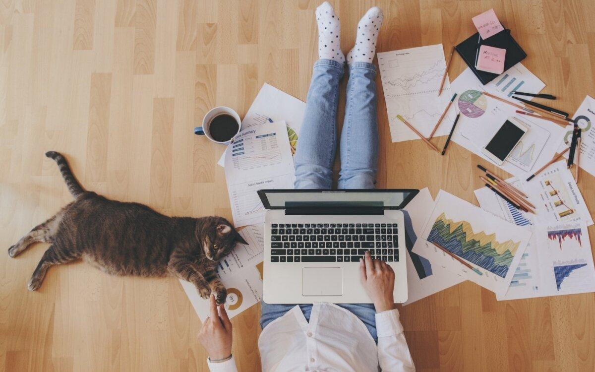 dirbti iš namų sociionom