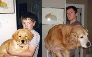 22 žavingos nuotraukos: vaikystėje ir dabar