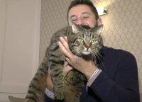 Slapta įsinešęs savo katiną į lėktuvo saloną rusas tapo socialinių tinklų žvaigžde