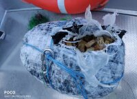 Border guards pull bundle with 15.4 kilos of amber from Nemunas river