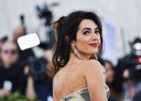 Amal Clooney sėkmės istorija: kaip ši moteris tapo tikru pasaulio fenomenu?