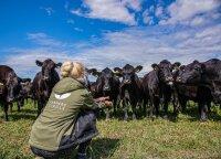Mėsos ekspertas Rokas Vasiliauskas įvardijo, į ką atkreipti dėmesį renkantis jautieną