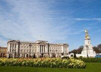 Paskaičiavo, kiek kainuotų mėnesiui išsinuomoti britų karališkąsias rezidencijas: sumos verčia aiktelėti