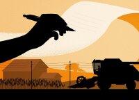 Jaunojo ūkininko darbai – nuo mėsinių avių iki krapų dalybų