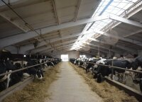 Ūkininkas paaiškino, kodėl žemės ūkyje niekada nebus gero atlyginimo
