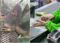 Parduotuvės karpių akvariume nemalonų reginį užfiksavusią vilnietę nustebino pardavėjos reakcija