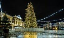 Klaipėdos kalėdinė eglė