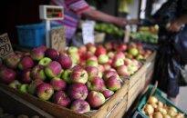 Lenkijoje parduodami obuoliai