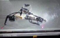 Strutį primenantis robotas bėgdamas pats išlaiko pusiausvyrą
