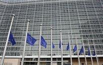 Europos Komisija: Kauno kogeneracinės jėgainės statybos nėra pagrįstos