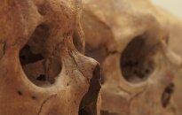 Kaip ir kodėl buvo nukirstos šių viduramžių vilniečių galvos?