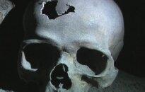 Kaukolė Šv. Dvasios bažnyčios kriptoje