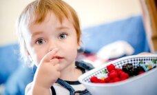 Gydytojas: kaip išnaudoti derliaus laiką, kad vaikai pasikrautų vitaminų ir mineralų