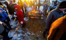 Halls Winter Rally festivalis