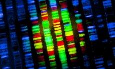 Genų sekoseka