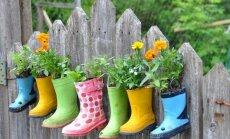 """<span style=""""color: #ff0000;"""">GALERIJA:</span> neįtikėtinos idėjos, kaip dekoruoti tvorą sode"""