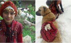 Mergaitė ir jos šuo išgelbsti ožką ir jos ką tik gimusį ožiuką