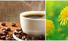 Kavos alternatyva