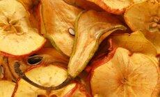 Metas šviežių vaisių derlių paversti džiovintomis gėrybėmis