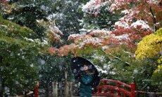 Sniegas Tokijuje
