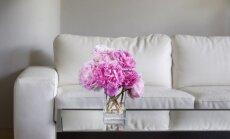 12 dekoravimo patarimų, kurie patobulins bet kurį kambarį