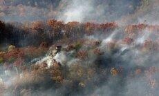 Miškų gaisrai JAV