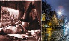 Naktinės plaštakės Vilniuje