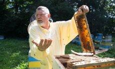 Bitininkas Algirdas Amšiejus