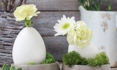 Pasidaryk pats: kiaušinio lukšto vazelė su priedais