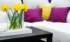 5 gudrybės, kaip į namus pritraukti pozityvios energijos