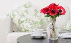 6 dizaino idėjos, kurios padės į namus prisikviesti pavasarį