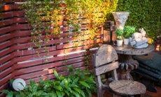15 mažo sodo įrengimo idėjų