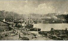 Gintaro gavyba Juodkrantėje XIX a.