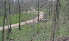 Padarytas kelias Utenos miškų urėdijoje iš karto nustačius pažeidimą