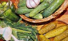 """""""Mano geriausias konservavimo receptas"""": traškūs konservuoti agurkėliai"""