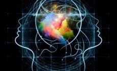 10 kasdienių dalykų, kurie padeda lavinti smegenis