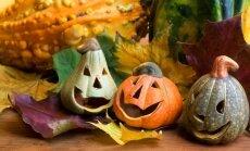 7 žingsniai kaip išskobti moliūgą ir dekoruoti namus
