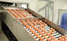 Vičiūnai atidarė kiaušinių rūšiavimo ir perdirbimo gamyklą