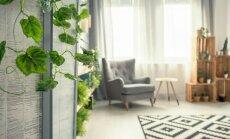 11 gudrybių, kurios padės įveikti netvarką namuose