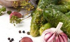 Saldžiarūgščiai agurkėliai