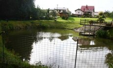 Užgrobta valstybinė žemė Klaipėdoje