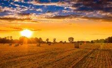 Astrologės Lolitos prognozė rugpjūčio 24 d.: rimtų sprendimų diena