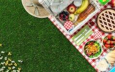 Kai išvengti vabzdžių įkandimų: 6 veiksmingi patarimai maloniai vasarai